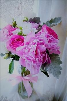 pink rose (2).jpg